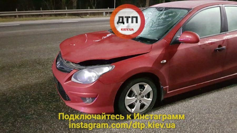 Под Киевом автомобиль насмерть сбил пешехода: фото