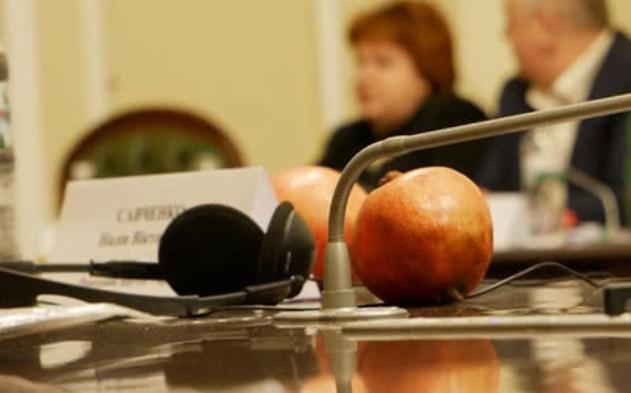Савченко принесла на комитет в Раду гранаты: фото