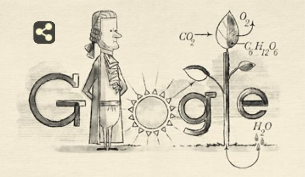 Google посвятил дудл одному из первооткрывателей фотосинтеза