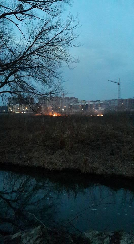 В Ирпене под Киевом снова горит торф: фото