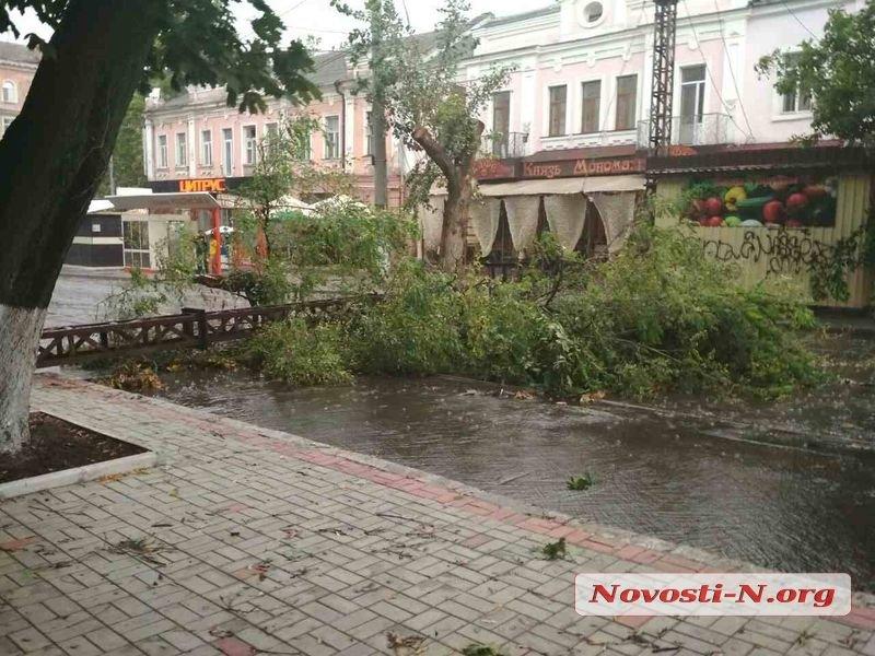 николаев2.jpg
