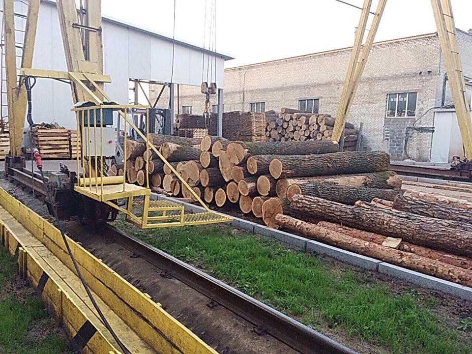 ГПУ провела больше ста обысков впроцессе расследования схем незаконной вырубки леса