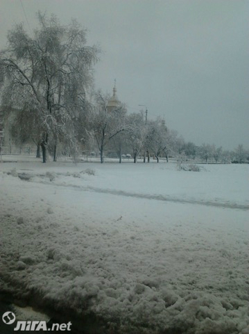 Луганскую область засыпало снегом, села и города обесточены: фото