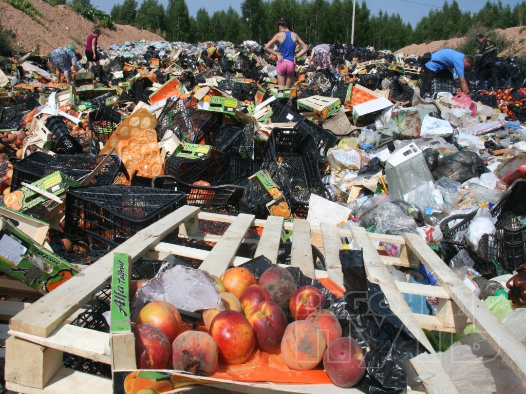 Россияне забирают себе неуничтоженные санкционные продукты - СМИ