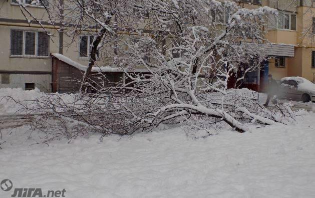 В Черкассах второй день нет воды: людей спасает снег - фото
