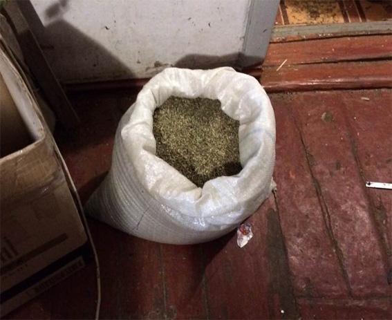 У жителя Кропивницкого дома нашли марихуаны на два миллиона